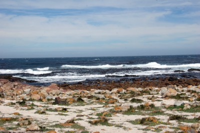 Pegram's Point, Cape Province, SA