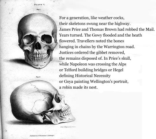 a-short-history-skulls_new